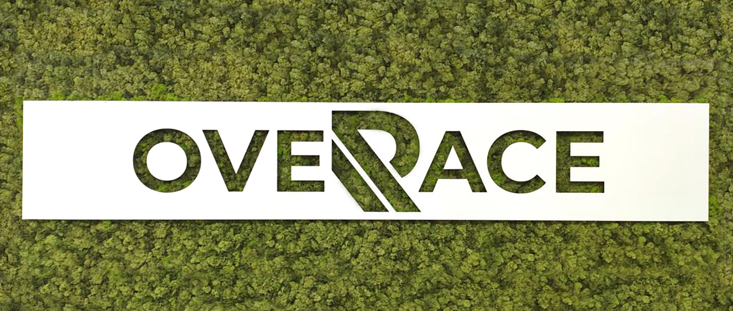 Overace Group introduces the team